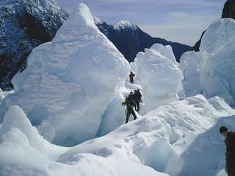 Im Franz Josef Gletscher Gebiet