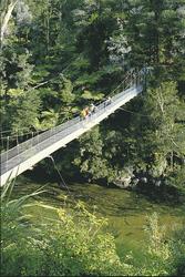 Brücke im Nationalpark