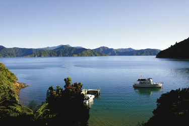 Landschaft des Marlborough Sounds