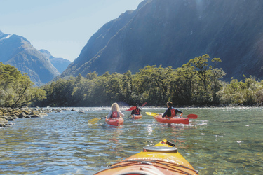 Milford Sound Cruise & Kayak