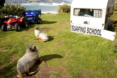 Surfschule, The Catlins