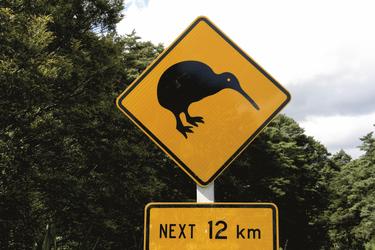 Vorsicht: Kiwi Crossing!