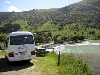 MoaTrek Bus