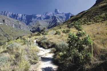 Unterwegs in den Drakensbergen
