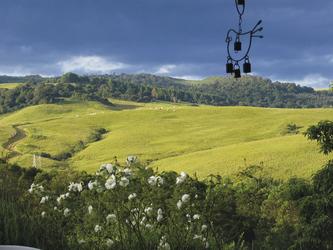 Sanfte Hügel im Landesinneren