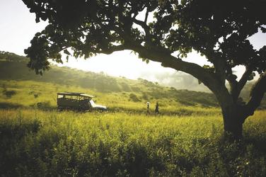 Unterwegs im Busch