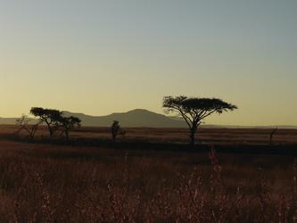 Abendstimmung im KwaZulu Natal