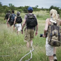 Zu Fuß im Busch unterwegs