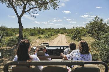 Im Busch unterwegs