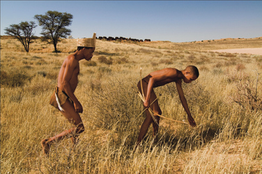 Mit den Buschmännern unterwegs