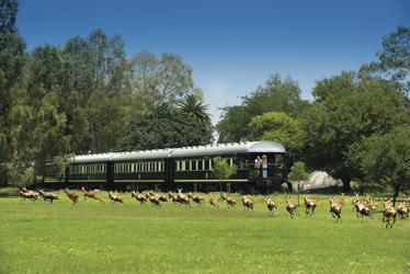 Rovos Rail, ©DOOKPHOTO