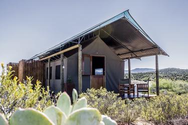 Zelt mit schattiger Terrasse