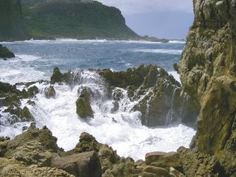 Raue Küste an der Garden Route