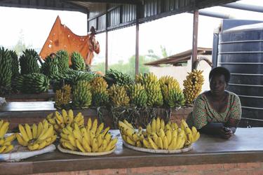 Bananenverkäuferin auf dem Markt