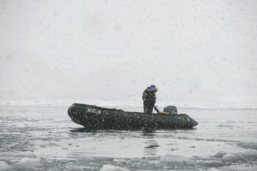 Zodiac im Schneetreiben ©Mathew Farrell