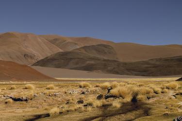 Landschaft in der Puna