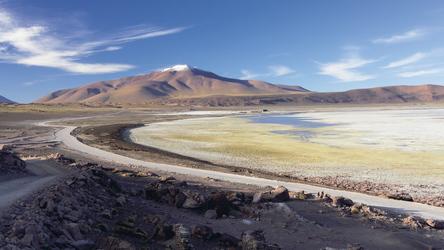 Laguna Hedionda im Altiplano