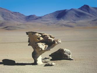 Arbol de Piedra - Siloli Wüste