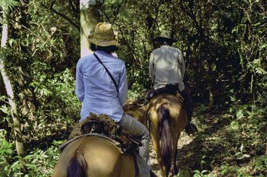 Ausritt im Amazonastiefland