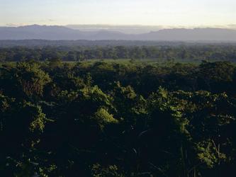 Blick ins Amazonastiefland Boliviens