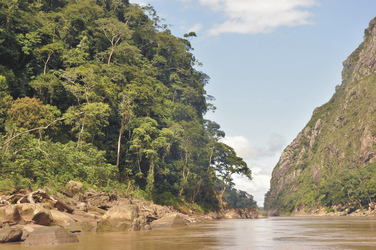 Madidi Nationalpark, ©Creative Tours