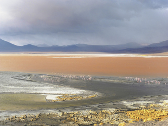 Laguna Colorada im Altiplano