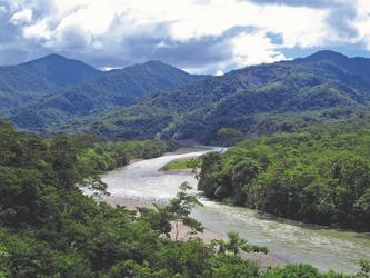 Amazonastiefland