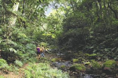 im Amboro Nationalpark