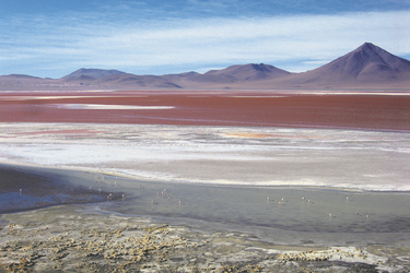Laguna Colorada, © Bastian Müller
