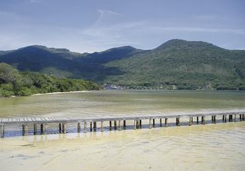 Costa da Lagoa - Santa Catarina