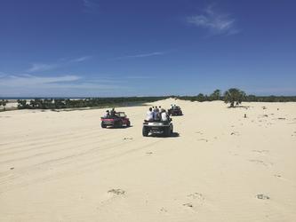 Buggytour am Strand