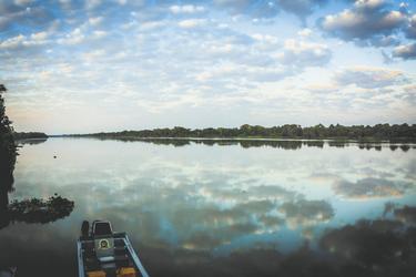 Bootsfahrt zur Tierbeobachtung