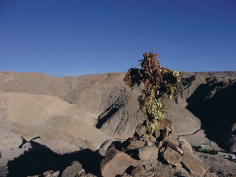 Höhenzug im Codpa Valley