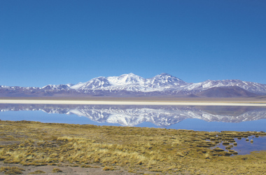 im Altiplano, ©Copyright 2009
