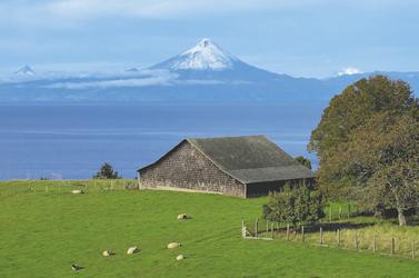 Landschaft am Llanquihue See
