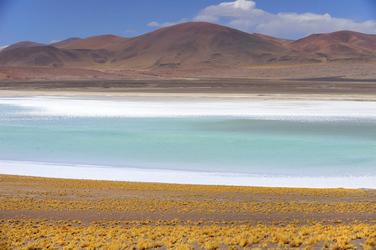 Hochlandlagune im Altiplano
