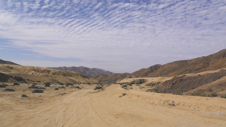 im Nationalpark Pan de Azucar