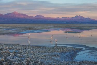 Salar de Atacama, ©Alto Atacama Desert Lodge & Spa