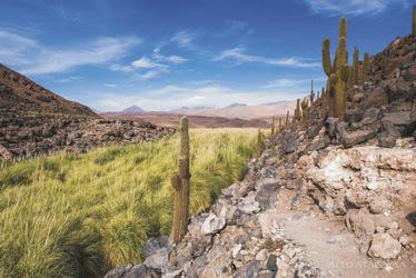 Wanderung im Altiplano, ©Alto Atacama Desert Lodge & Spa