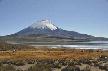 Lago Chungara und der Vulkan Parinacota im Lauca Nationalpark