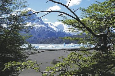 Eisberge im Lago Grey, ©Australia Plus