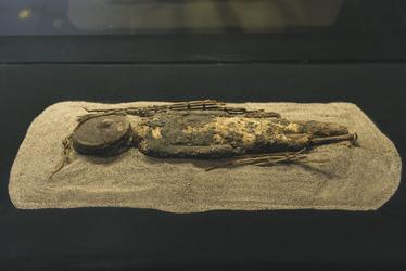 Mumie der Chinchorro Kultur