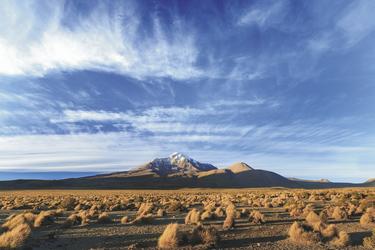 unterwegs im Altiplano