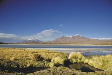 Hochlandlagune in Bolivien