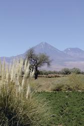 Blick von San Pedro de Atacama