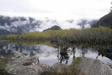 See der toten Bäume in der Region Aisen