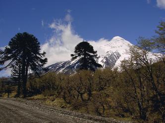 Blick auf den Vulkan Lanin