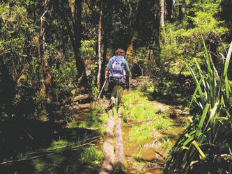 Wanderung nahe Puerto Varas in der Seenregion
