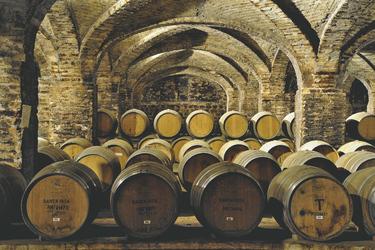 im Weinkeller von Santa Rita
