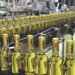 Weingut Santa Rita